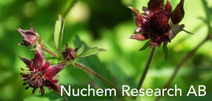 Nuchem Research